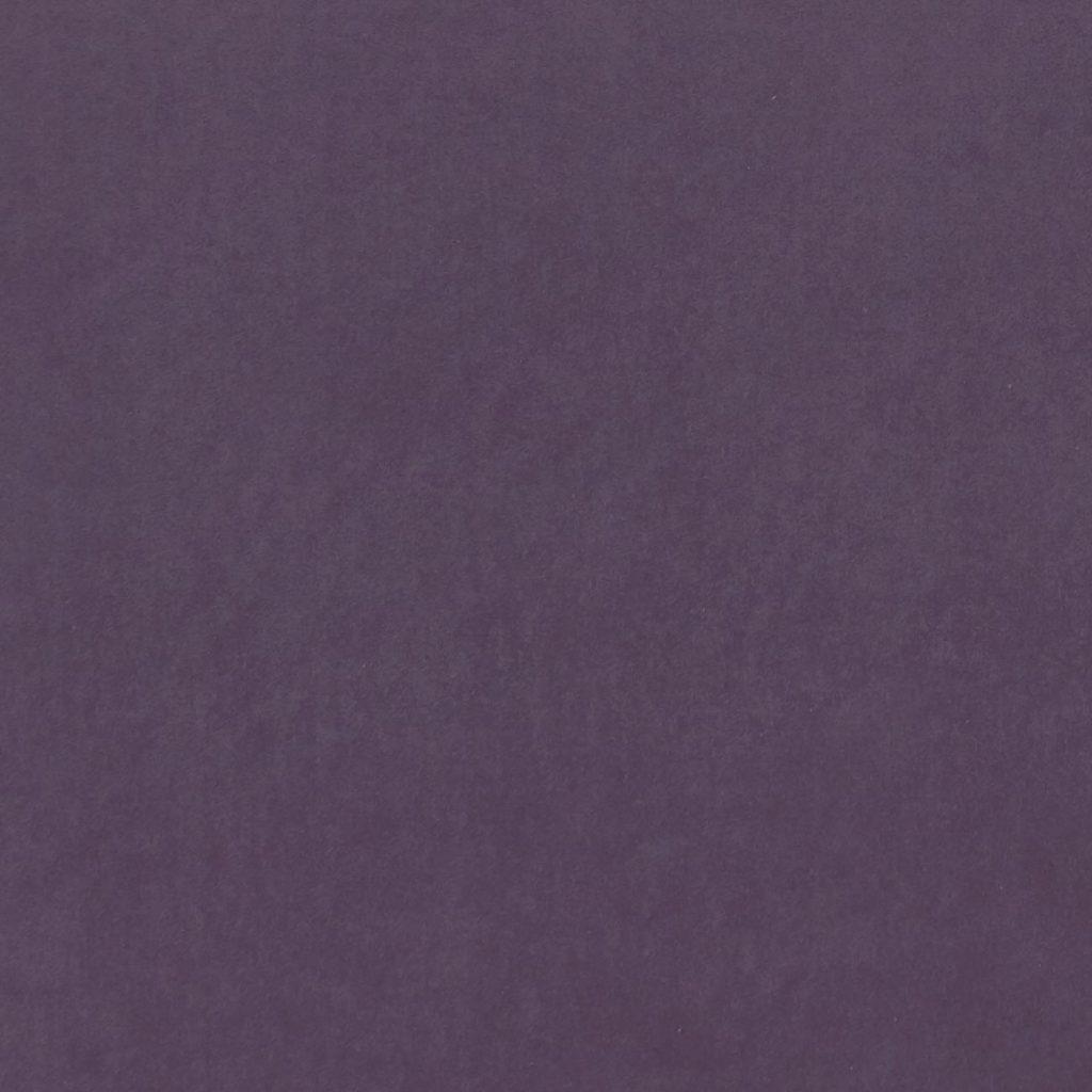 Luxurious Velvet Grape